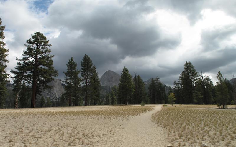 Sandy Meadow
