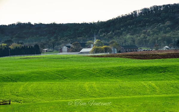 Church among the Pennsylvania Amish Dairy Farms