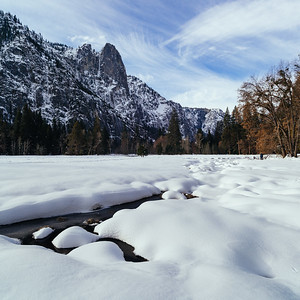 Snowy Cook's Meadow