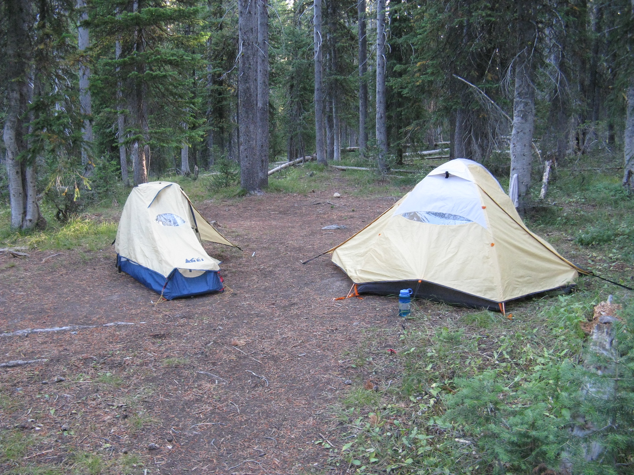 Yes - per Park directions, our tents were 100 yds from where we cooked.