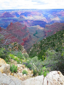 Looking down the Bright Angel Trail canyon with Indian Garden Campground in the central oasis.