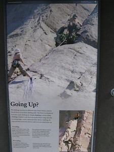 Going up?  ...   sure, why not.