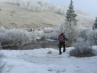 Crossing the creek.  Note beautiful ice crust still on the trees and bushes.