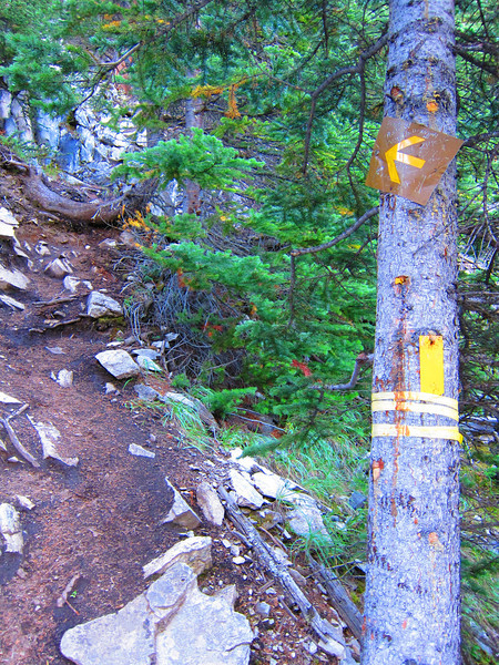 From now on the route is quite steep (rarely a switchback).