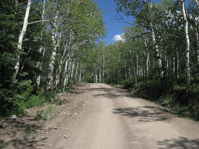 It's a fine 2-WD road to (Dinkle Lake) Trailhead.