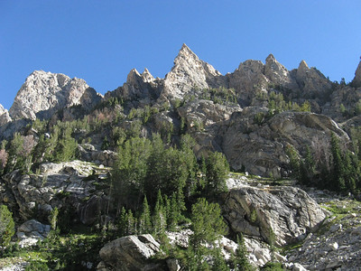 On the north side of the cyn, Irene's is the prominent arete in the center.