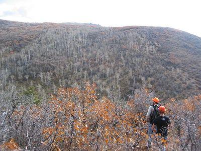 Atop the ridge at last.