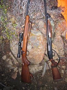 Your choice: 30.06 rifle or 12-gauge shotgun.