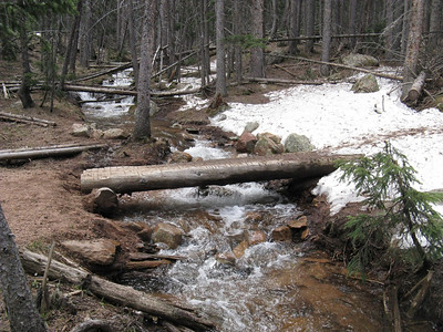There are two log bridges near start - plus a creek crossing a little later.