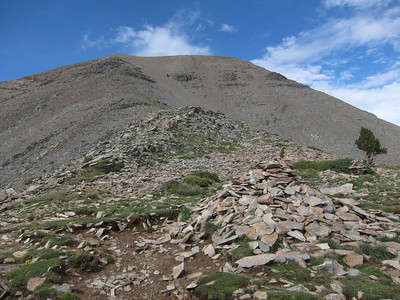 A rather large cairn here at treeline. .. Much smaller ones generally suggest the path leading along the ridge to the summit.