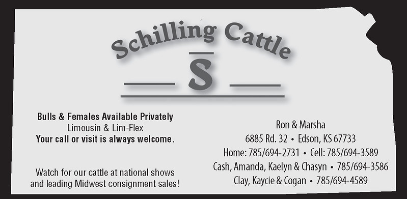 Schilling Cattle_HRI16_5inch PROOF 0524