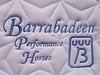 Barrabadeen Performance Horses