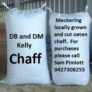 DB and DM Kelly Chaff Silver Sponsor