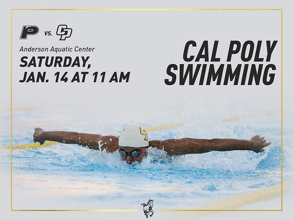 WEBSITE ARTICLE BANNER, Cal Poly Swimming