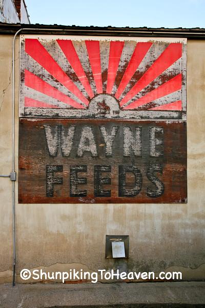 Wayne Feeds Sign, Floyd County, Iowa
