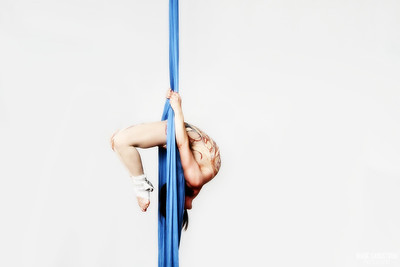 The FlyHive Aerialists