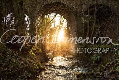 sunrise at the stream