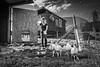 Familie Mathias und Isabelle Gygax, Bergwirtschaft Güggel<br /> <br /> Mathias und Isabelle Gygax mit ihren Kindern David, Lukas und Tobias und den Grosseltern Margith und Ueli mit dessen Bruder Fritz. Schon seit 1938 leben und arbeiten Gygaxs auf dem Güggel und seit 1976, als Ueli Gygax den Hof von der Alpgenossenschaft käuflich erwerben konnte, als Eigentümer. 2007 haben Mathias und Isabelle Gygax Hof und Restaurant übernommen und führen dieses nun in 3. Generation. Auf dem 72 ha grossen Anwesen mit schönem Weideland und 10 ha Wald betreibt Mathias neben einem Sömmerungsbetrieb vor allem Milchwirtschaft, dies seit 2007 in einer Betriebsgemeinschaft mit seinem Bruder Stefan vom Berghof «Zentner». Zu dem Berghof auf dem Brunnersberg, 1150 m ü.M., gehört auch die Bergwirtschaft, wo Isabelle Gygax, unterstützt von der ganzen Familie, selbstgebackenes Brot, Kuchen und einfache Gerichte vom Hof anbietet. Zum Güggel und zu Gygaxs gehören, neben Ziegen und allerlei Kleintieren, aber vor allem die Freiberger Pferde. Diese sind das grosse Hobby und der Stolz der ganzen Familie © Patrick Lüthy/IMAGOpress.com / Text : Max Misteli