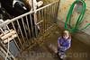Familie Marcel Bläsi und Martina Flury<br /> <br /> Marcel Bläsi und Martina Flury mit ihren Kindern Patrick und Tanja und Grossmutter Vreni. Seit 1997 führt Marcel Bläsi in 2. Generation, zusammen mit Martina Flury und den gemeinsamen Kindern Patrick und Tanja, den eigenen Bauernbetrieb. Analog wie seine Eltern Ernst und Vreni, die neben der Landwirtschaft noch das Restaurant Löwen führten, geht auch Marcel einer zweiten Arbeit nach. Wenn er früh morgens um 05.00 Uhr zu seiner 70% Arbeit bei der Migros fährt, weiss er, dass Martina Kühe und Kälber versorgt. Zusammen führen sie einen reinen Mastbetrieb. 15 Galtkühe und 35 Mastkälber gilt es jeweils zu füttern, zu tränken und zu versorgen, bevor sie von Viehhändler Rolf Nützi nach 3 Monaten wieder abgeholt werden. Daneben betreiben sie auf den 23 ha eigenem Land Ackerbau mit Mais, Gerste und Tritikale Kulturen und seit mehreren Jahren wird auch eine 5 ha grosse Fläche Urdinkel angebaut. Die nächste Generation macht sich schon bereit, einmal in die Fusstapfen zu treten. Sohn Patrick hat anfangs August die landwirtschaftliche Lehre begonnen.<br /> <br /> © Patrick Lüthy/IMAGOpress.com / Text : Max Misteli