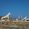 The ancient lions of Delos