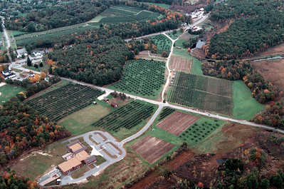 A wide shot of the center farming area of Moose Hill Orchard.  U-pick 3 on the top left, U-pick 1 in the center, the farm stand at the top.