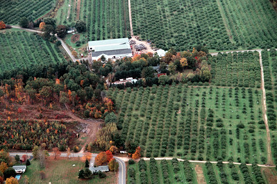 A view to the south of Woodmount Orchards.  The logging in the left bottom corner near the sharp bend of Hovey Road is the start of Orchard View Estates in October of 2005
