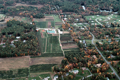 Sunnycrest farm goes back further than you think, bordering Premier Drive on the west side of the farm.  Those homes in that neighborhood can be seen at the bottom of this image.  The land has been preserved with open space funds providing a agricultural easement.  This prevents development with homes similar to those seen around the farm.