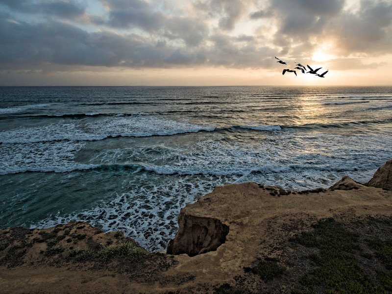 Pelicans pass Carlsbad Cliffs at sunset