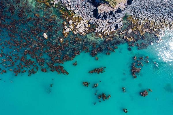 Aerial view of the Akaroa coastline