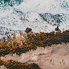DJI_0139 David Scarola photography, Coral Cove Park, DEC 2018, web