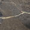 Spill Investigation