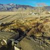 Danberg Home Ranch,  Dangberg Land and Livestock Co., Minden, Nevada