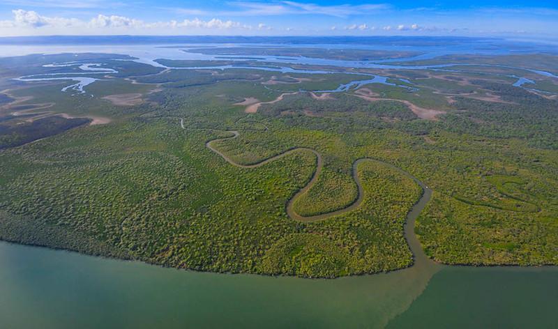 Moreton Wetlands