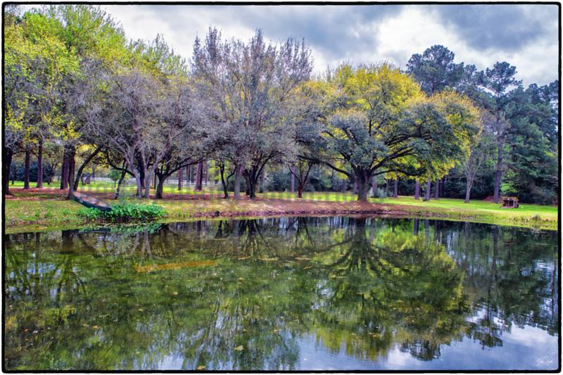 Seasons Harvest Pond 1