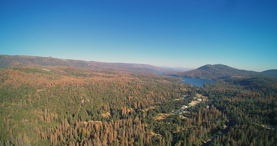 Bass Lake - This aerial view shows the amazing number of dead/dying trees in the area.