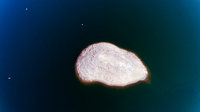 An Island in Millerton Lake, close to the dam.