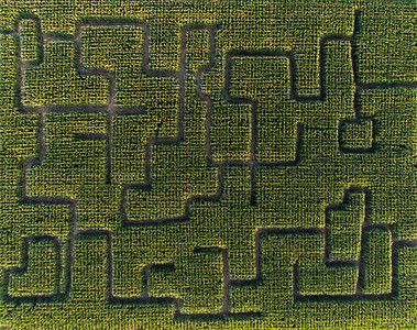 Raisn Hell corn Maze