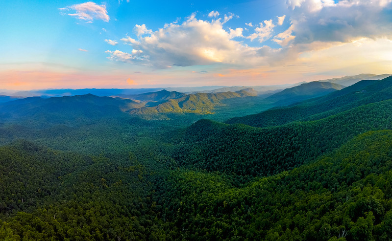 Mount Pisgah National Forest