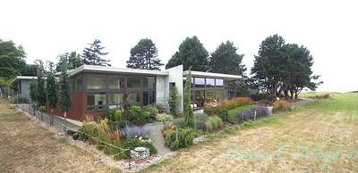 Janine & Terry's garden_1230