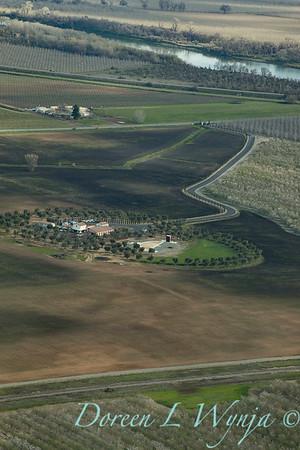 Violich Farms_8105