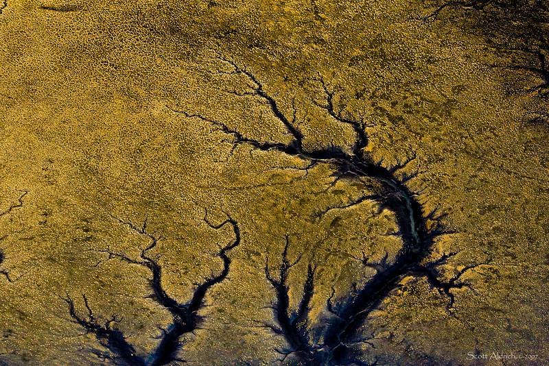 Patterns in shoreline, Alaska.