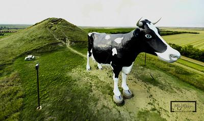 Giant_Cow