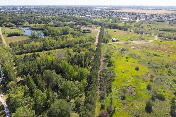 Forestry Farm Aerial
