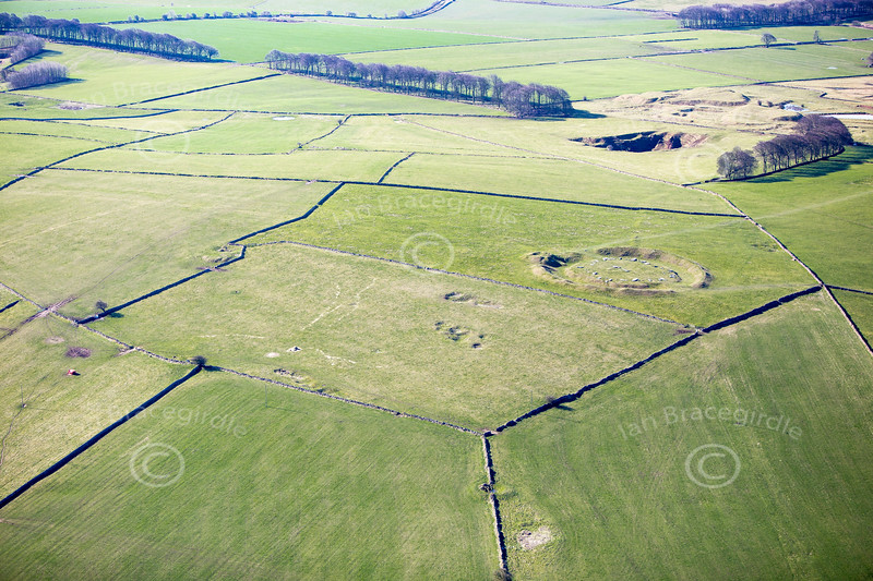 Arbor Low Neolithic Henge from the air.