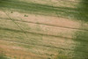 Aerial photo of crop marks.