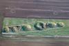 Aerial photo of Bully Hill bowl barrow cemetery.