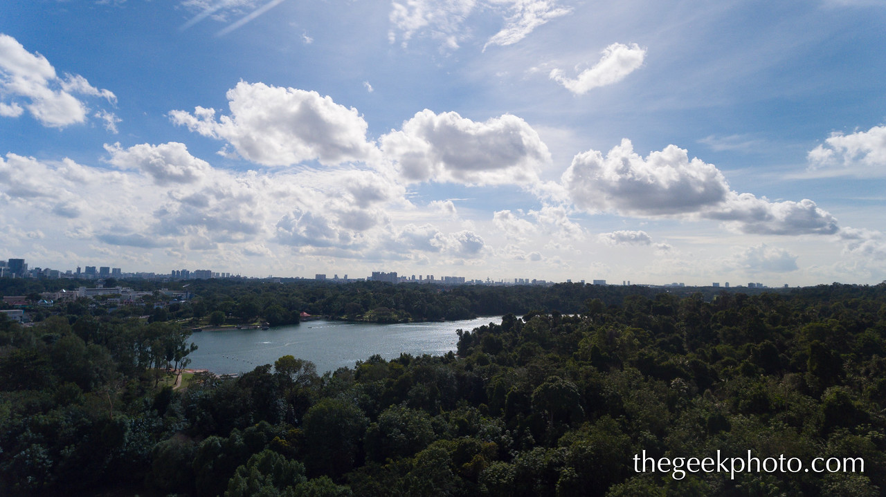 Macritchie Reservoir, Singapore