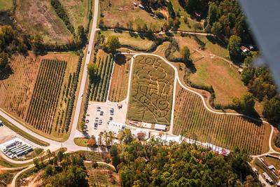 Corn maze at Hillside Orchard Farms
