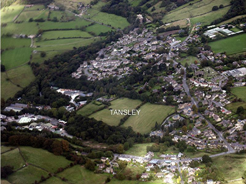 Tansley