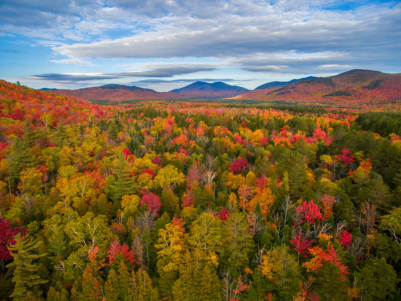 Fall Colors, Adirondacks